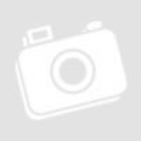 Whirlpool W9 821D OX H Kombinált hűtőszekrény, 318L